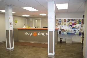 Dog Days St. Paul dog daycare & boarding 651-642-9663