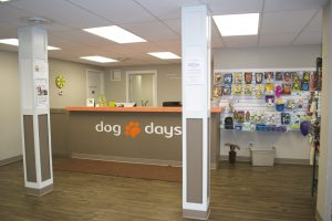 St. Paul dog daycare & boarding Dog Days 651-642-9663