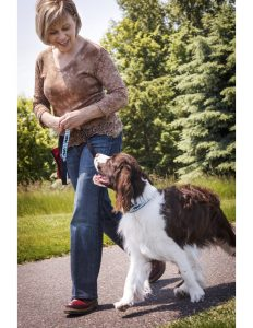 St. Paul dog training - Dog Days dog daycare & boarding - Linda Schindler Dog Traning